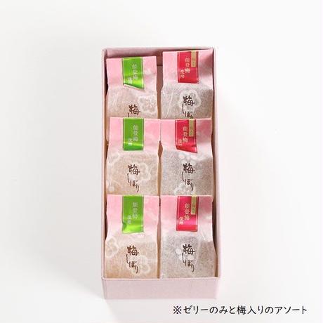 能登梅しぼり(アソート) 6個入