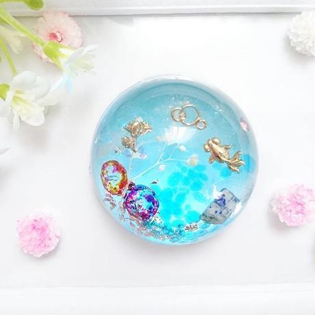 儚く美しい~金魚の夢