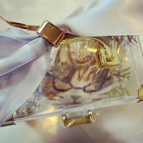 グラサン猫入り宝箱
