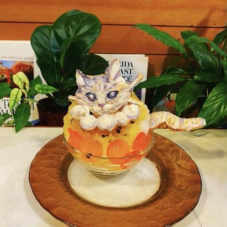 ぼったくりシリーズ①〜パール付き猫かき氷〜