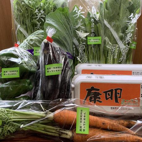 【季節の野菜おまかせセット】康卵20個、季節の野菜(無農薬無化学肥料、特別栽培) クール送料込み