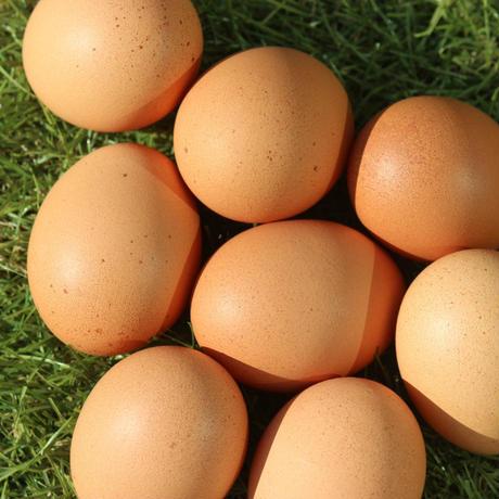 【初回限定】ふぞろいの卵たち 10個入×3パック(30個)