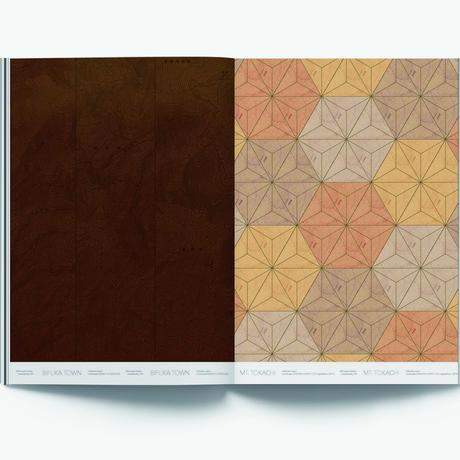 art book Mimetic Maps2(年輪する擬態地図)