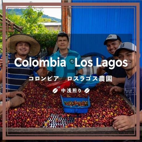 《送料¥200(メール便)》【コロンビア】ロスラゴス農園(100g)中浅煎り