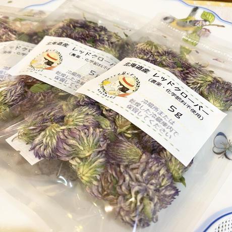 北海道産 レッドクローバー(農薬不使用)  5g