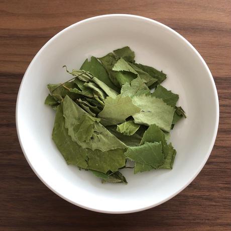 北海道産 白樺の葉(農薬不使用)  5g