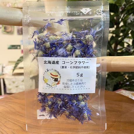北海道産 コーンフラワー(農薬不使用)  5g