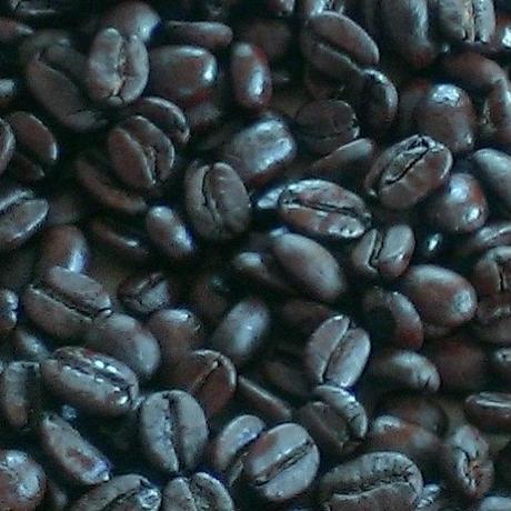 アイスコーヒー(エスプレッソ)用 500g オーガニック  最高級グレード ご注文後に焙煎 有機JAS認証