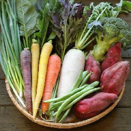 旬の野菜ダンボールぎゅうぎゅう詰め合わせセットSコース
