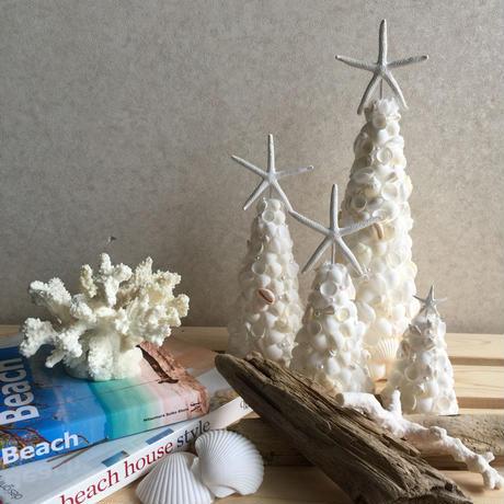 shell tree S