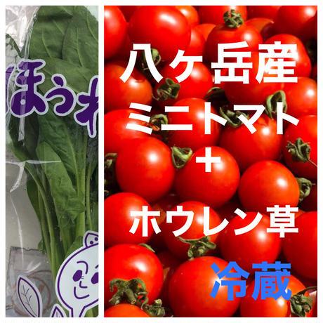 コクトマ!味濃いめミニトマト(箱込約1kg)と無農薬ほうれん草   野菜の苦手なお子様にもオススメ! クール便、品質保証あり