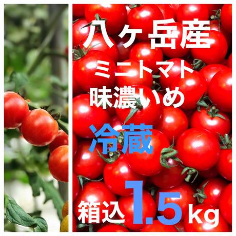 (クール便)    訳あり価格   ミニトマト 箱込約1.5kg 味濃いめ 遠方、不在がち、贈答用にオススメお勧め  八ヶ岳産