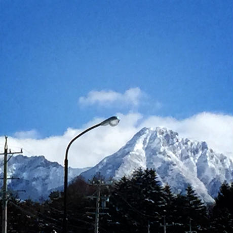 八ヶ岳(長野県) 産ミニトマト約1.8kgと絶品無農薬カットレタスのセット