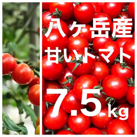 八ヶ岳(長野県) 産 ミニトマト 約7.5kg バラ 甘くて味が濃い 免疫力UP