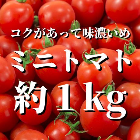 【1番人気】八ヶ岳産 味濃いめ 田宮トマト 約1kg
