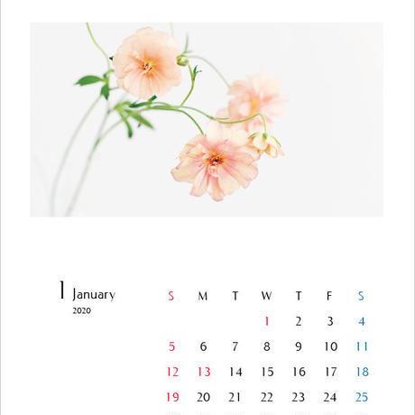 カレンダー2020・A4サイズ/calender2020 A4size