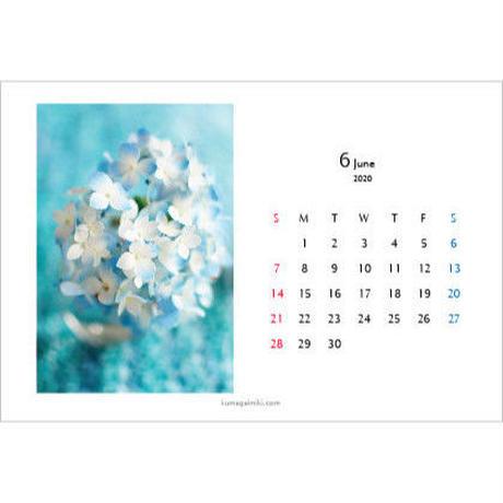 カレンダー2020・ハガキサイズ/calender2020 postcard size