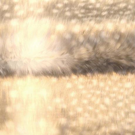 アクリルモヘア(岡田織物)白ふくろう柄 65cmx100cm