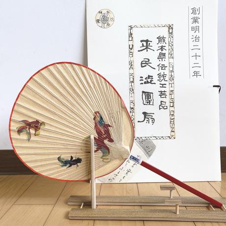 小丸 金魚(百田まどか)