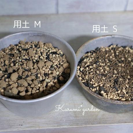 多肉植物・サボテンの土S(細粒) 300㎖