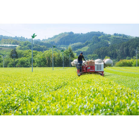 〝自然派shop〟コラボ商品『在来茶 グラノーラ』