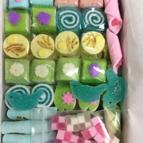 京菓子 半生菓子 いろいろ 詰め合わせ箱(大)