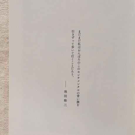 池田修三 センチメンタルの青い旗