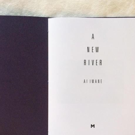 岩根愛 A NEW RIVER