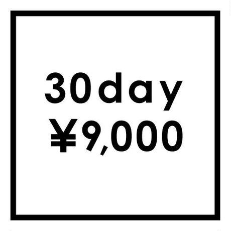 DIY オービットサンダ レンタル品 30日