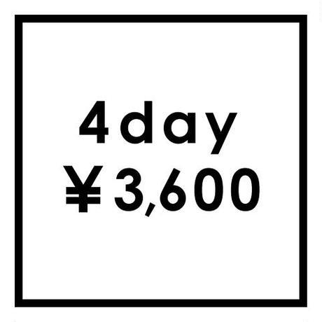 DIY ジグソー レンタル品 4日