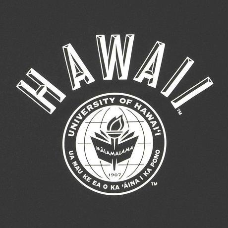 HAWAI'I Tシャツ メンズ レディース HWUS-011 6.2oz ヘビーウエイト ハワイ カレッジ ロゴ オープンエンドTシャツ アメカジ