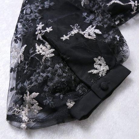 刺繍チュールブラウス