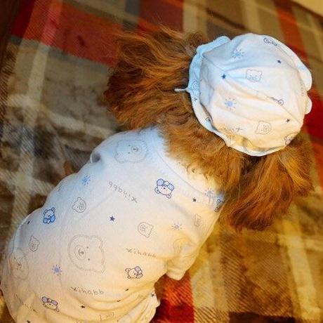 【LAMODA】オールシーズン パステルブルー パジャマ 小型犬 XS-XL パジャマ カバーオール 部屋着 つなぎ 傷なめ防止  犬服 ドッグウェア