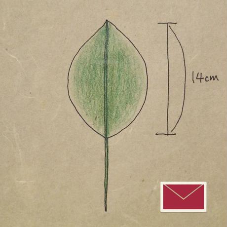 『郵便』和紙の葉っぱ/大1枚