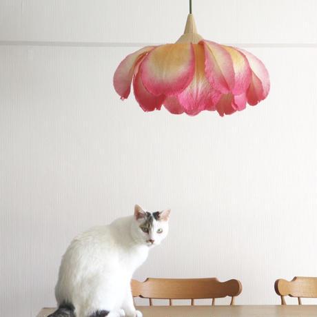ランプの小さな旅/M,Lサイズ