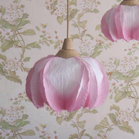 桜/Mサイズ