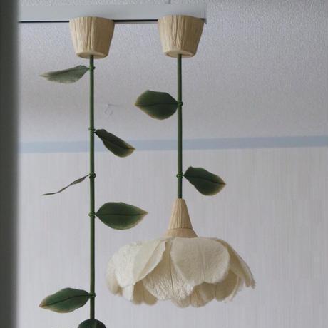 薔薇Sサイズ&蕾のセット