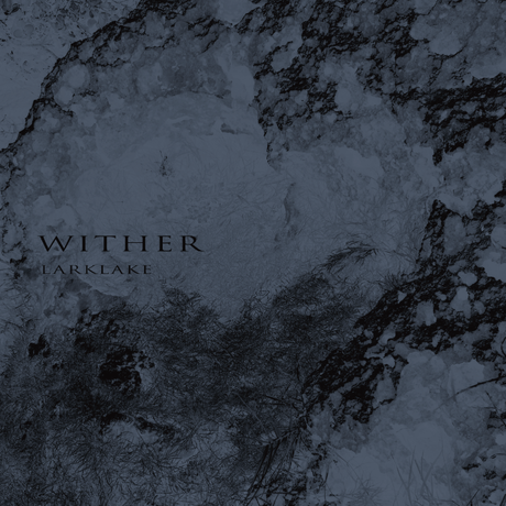 6th Album WITHER