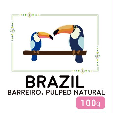 """100g"" ブラジル バヘイロ パルプド・ナチュラル"