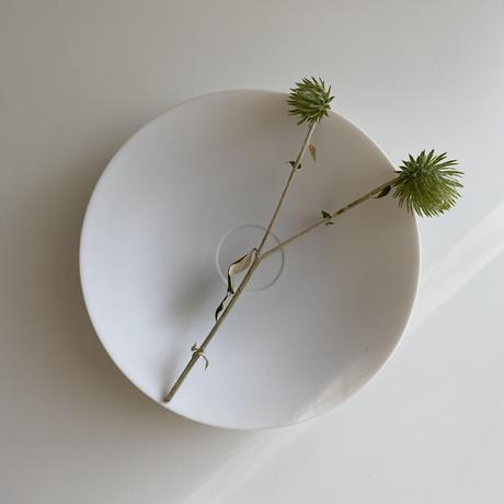 森岡希世子 浅鉢φ18