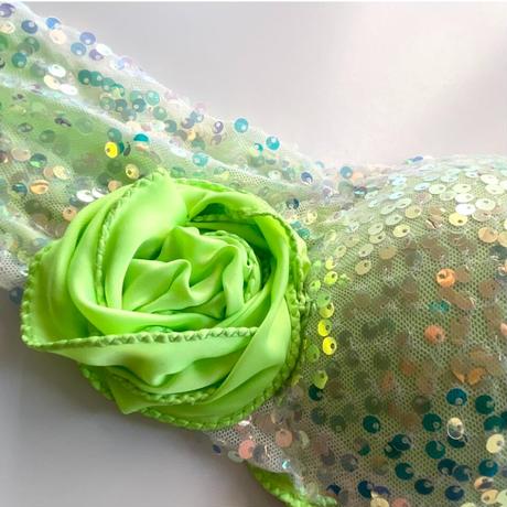 ベリーダンスコスチューム【Neon Green】
