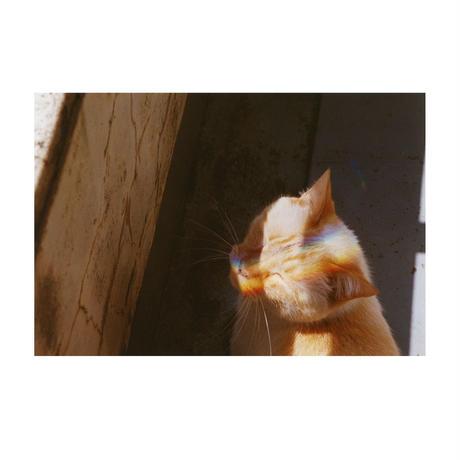 森康志写真集  『ハットリくん』