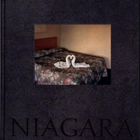 NIAGARA / Alec Soth