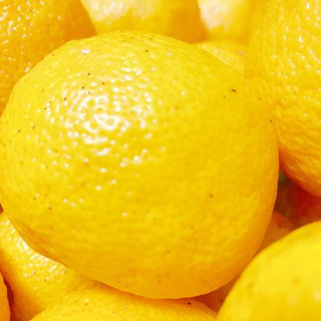 柚子(ゆず/ユズ)和精油10ml(精油/エッセンシャルオイル/アロマオイル)