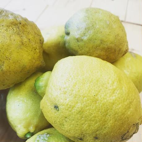 国産レモン(リスボン)和精油50ml(精油/エッセンシャルオイル/アロマオイル)