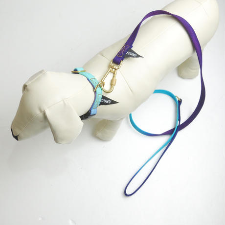 Found My Animal EGG BLUE TO VIOLET COTTON DOG LEASH, STANDARD