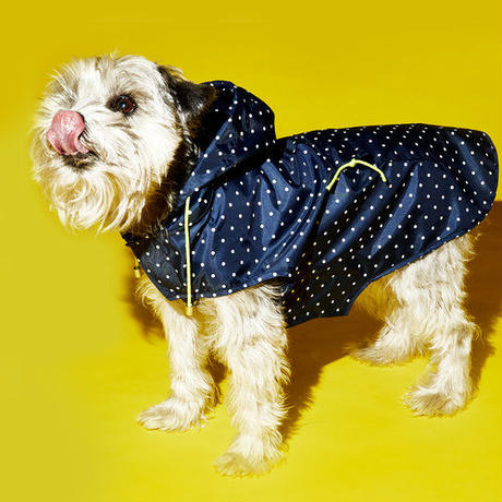 Ware Of The Dog POLKA DOT ANORAK RAINCOAT NAVY/WHITE  SIZE 1,2