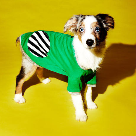 Ware Of The Dog DOT T-SHIRT GREEN