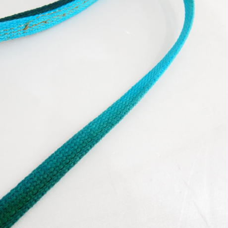 Found My Animal TEAL TO GREEN COTTON WEBBING DOG LEASH, STANDARD