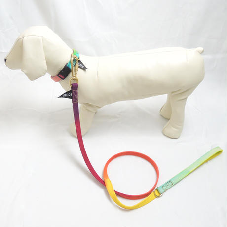 Found My Animal PRISMATIC COTTON DOG LEASH, STANDARD